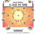 Leaf in Time