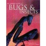 Natural World of Bugs & Insects