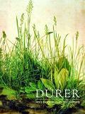 Durer And The Virgin In The Garden