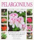 Pelargoniums (New Plant Library Series) - Blaise Cooke - Hardcover