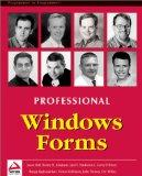 Professional Windows Forms
