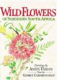 Wild Flowers of Northern South Africa