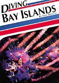 Diving Bay Islands