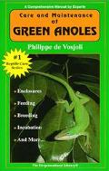 General Care and Maintenance of Green Anoles