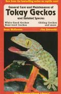 General Care and Maintenance of Tokay Geckos and Related Species
