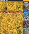 Invertebrates A Quick Reference Guide