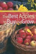 Best Apples To Buy And Grow