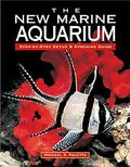 New Marine Aquarium Step-By-Step Setup & Stocking Guide