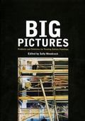 Big Pictures Problems and Solutions for Treating
