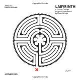 Mark Wallinger: Labyrinth: A Journey Through London's Underground (Art on the Underground)