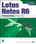 Lotus Notes R6 Professional Projects