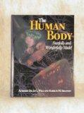 The Human Body: Fearfully And Wonderfully Made