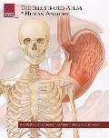 The Illustrated Atlas of Human Anatomy