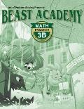 Beast Academy Practice 3B