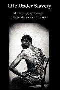 Life Under Slavery: Autobiographies of Three American Slaves