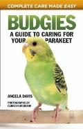 Budgies : A Guide to Caring for Your Parakeet