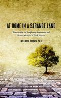 At Home in a Stange Land : Ministries That Are Transforming Communities and Planting Churche...