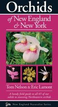 Orchids of New England and New York