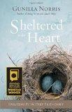 Sheltered in the Heart : Spirituality in Deep Friendship