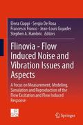 Flinovia - Flow Induced Noise and Vibration Issues and Aspects : A Focus on Measurement, Mod...