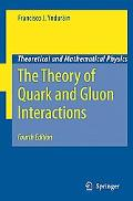 Theory of Quark and Gluon Interactions