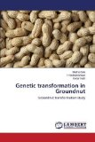 Genetic transformation in Groundnut: Groundnut transformation study