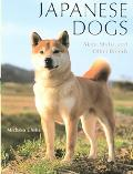 Japanese Dogs Akita, Shiba, and Other Breeds