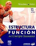 Estructura y Funcion Cuerpo Humano