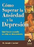 Como Superar La Ansiedad Y La Depresion Que Hacer Cuando Su Vida Se Descontrola