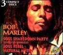 Bob Marley Soul Shakedown Party; Soul Rebel; Natural Mystic