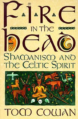 Fire in the Head Shamanism and the Celtic Spirit
