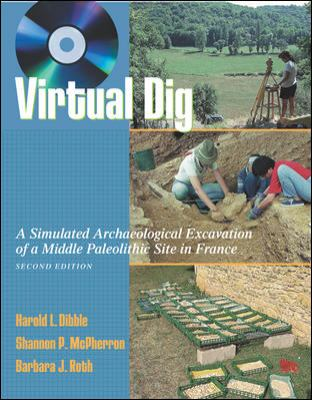 Virtual Dig A Simulated Archaeological Excavation of a Middle Paleolithic Site in France