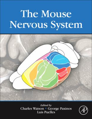 Mouse Nervous System