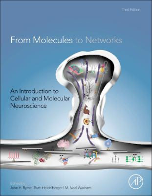 From Molecules to Networks : An Introduction to Cellular and Molecular Neuroscience