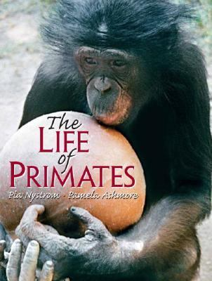 Nonhuman Primates How Much Like Us?
