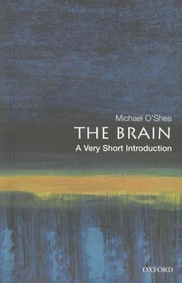 Brain A Very Short Introduction