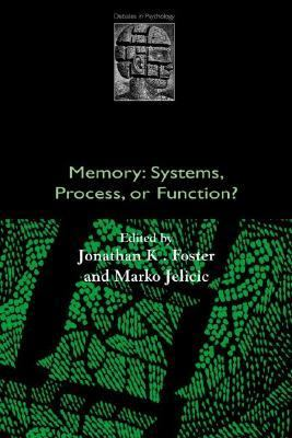 Memory Systems, Process, or Function?