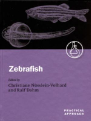 Zebrafish A Practical Approach