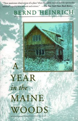 Year in the Maine Woods