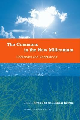 Commons in the New Millennium Challenges and Adaptation