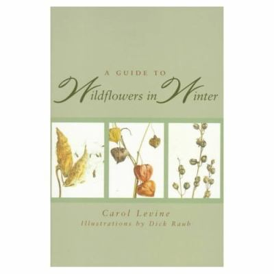 Guide to Wildflowers in Winter Herbaceous Plants of Northeastern North America