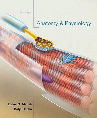 Anatomy & Physiology, 4th Edition