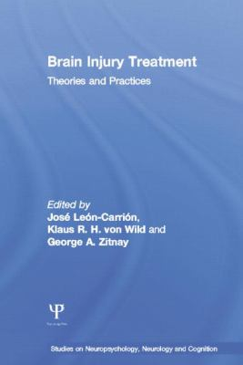 Brain Injury Treatment : Theories and Practices