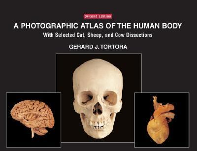 Photographic Atlas of the Human Body With Selected Cat, Sheep, and Cow Dissections