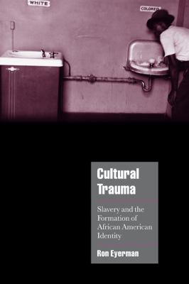Cultural Trauma Slavery and the Formation of African American Identity