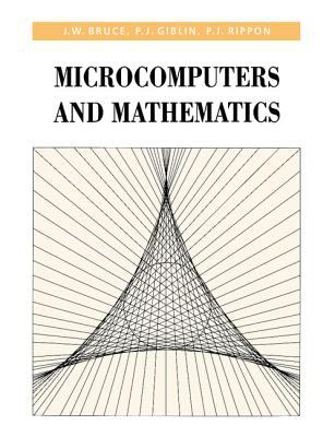 MicroComputers and Mathematics - J. W. Bruce - Hardcover