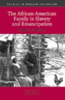 African-American Family in Slavery and Emancipation