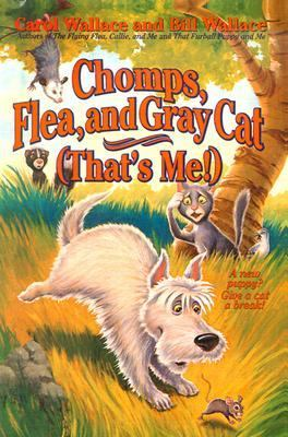 Chomps, Flea and Gray Cat