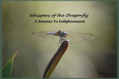 Whispers of the Dragonfly : A Journey to Enlightenment