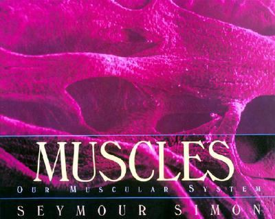 Muscles Our Muscular System